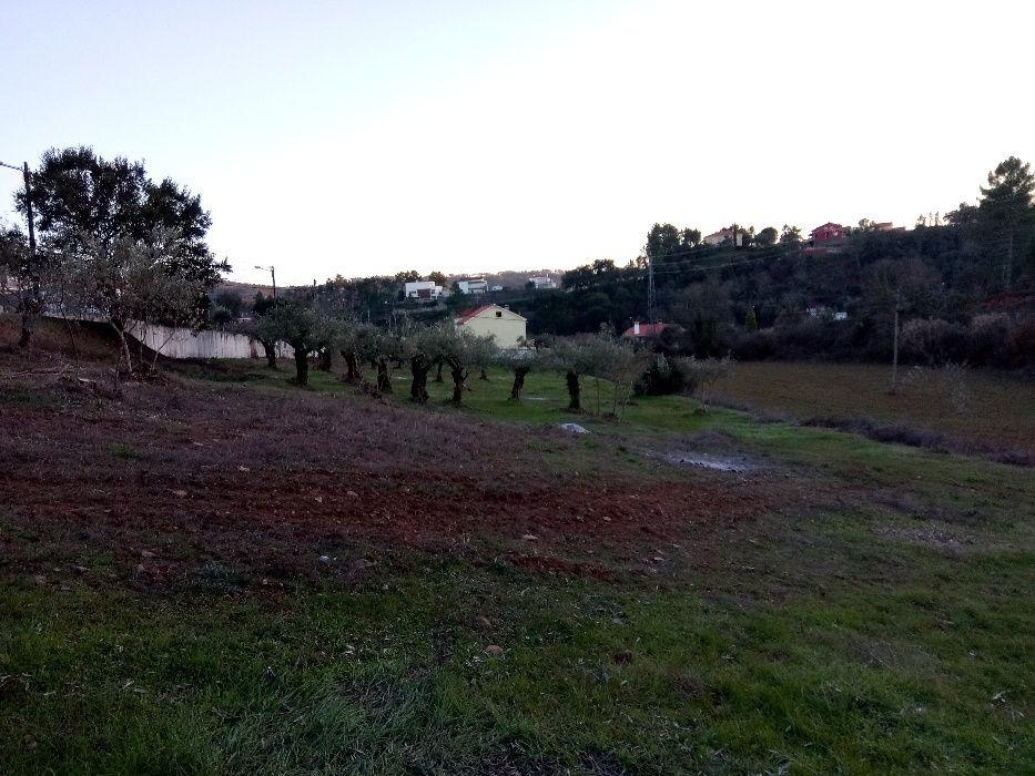 Limpeza lavoura de terrenos agrícolas/florestais e podas