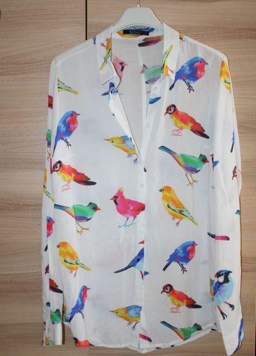Koszula Ptaki Moda OLX.pl