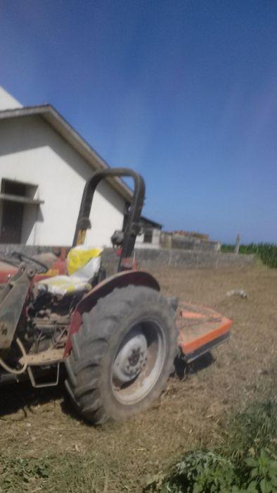 Limpeza de terrenos e cultivo