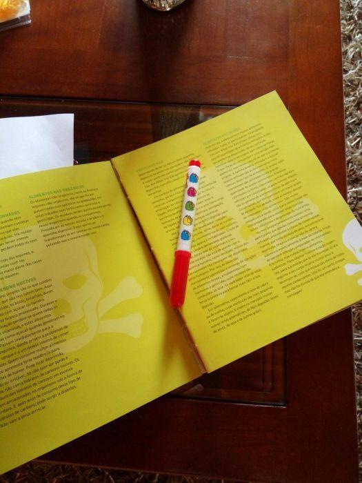 Explicações para o ensino basico, secundário e superior Vila Praia de Âncora - imagem 1
