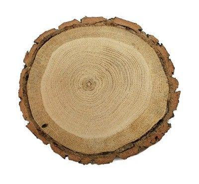 Plaster drewna dąb szlifowany flek 17-20 cm Krążek