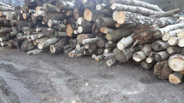 drewno opałowe kominkowe buk dąb brzoza sosna jesion olcha