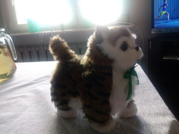 Interaktywny kot chodzi miauczy spiewa