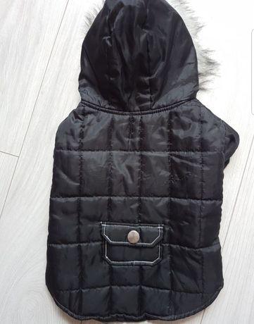 Czarna kurtka na zime dla psa rozmiar M