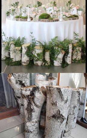 Pieńki brzozowe średnica 10-15 cm, wysokość 40-50 cm, boho, rustykalne
