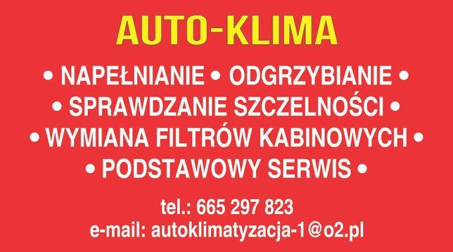 AUTO-KLIMA/odgrzybianie/wymiana filtrów kabinowych/szczelność/od100pln