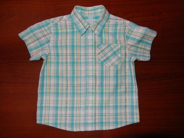 Koszula chłopięca w kratkę, z krótkim rękawem Cool Club, Smyk, rozm.80