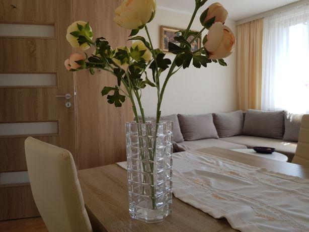 Wynajmę mieszkanie 50 m2 Sokołów Podlaski