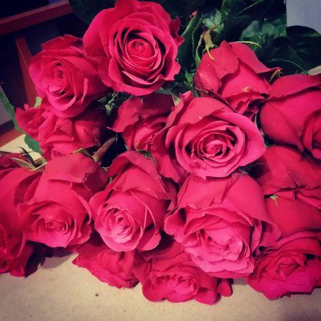 Саженцы роз от производителя!Опт и розница
