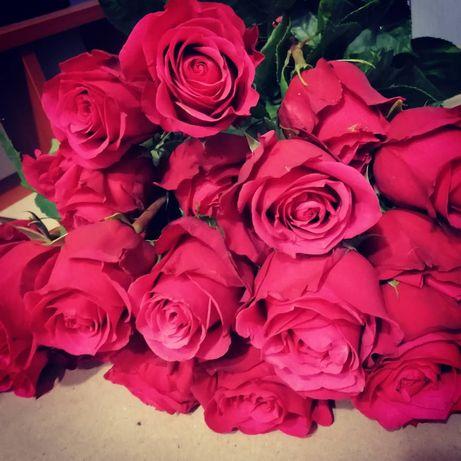 Саженцы роз от производителя! Осень 2021