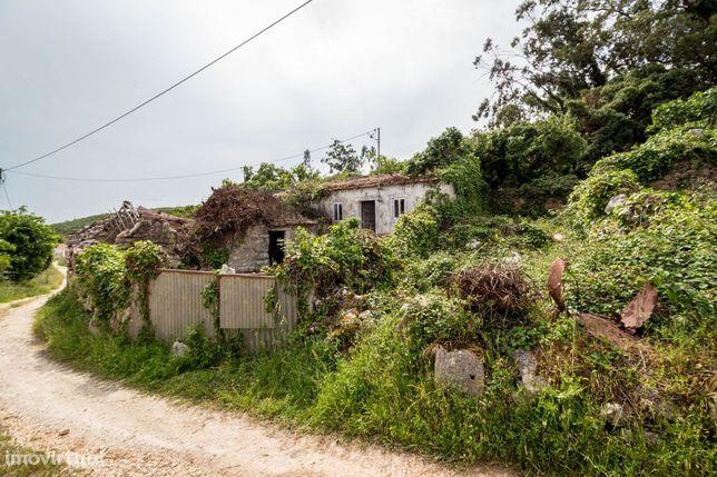 Casa antiga em Lote de Terreno com projeto em localização preveligiada