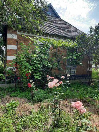Дом в с. Зелёное Поле
