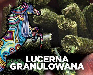 Lucerna pelet.Tona.Pierwszy gatunek+certyfikat