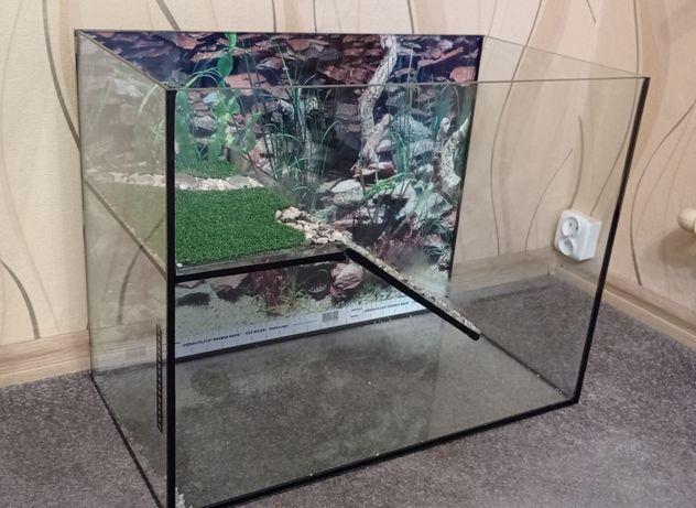 Akwarium dla żółwia