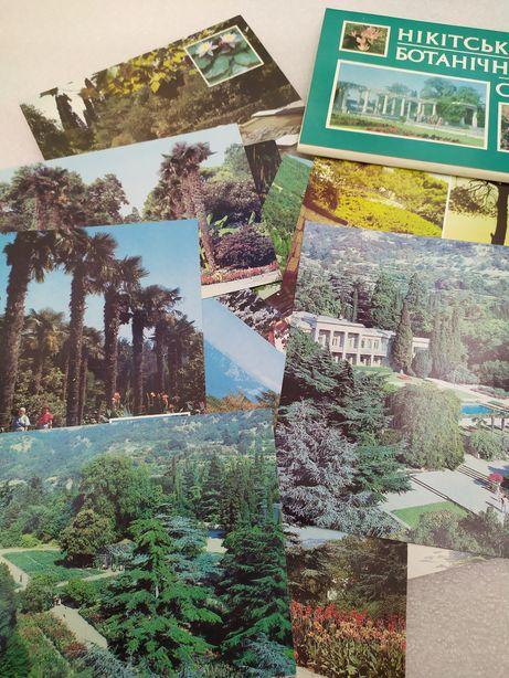 Новый! Открытки Никитский ботанический сад Крым Ялта пальмы кедр ЮБК