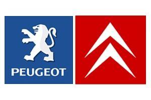 Компьютерная диагностика авто Peugeot,Citroen