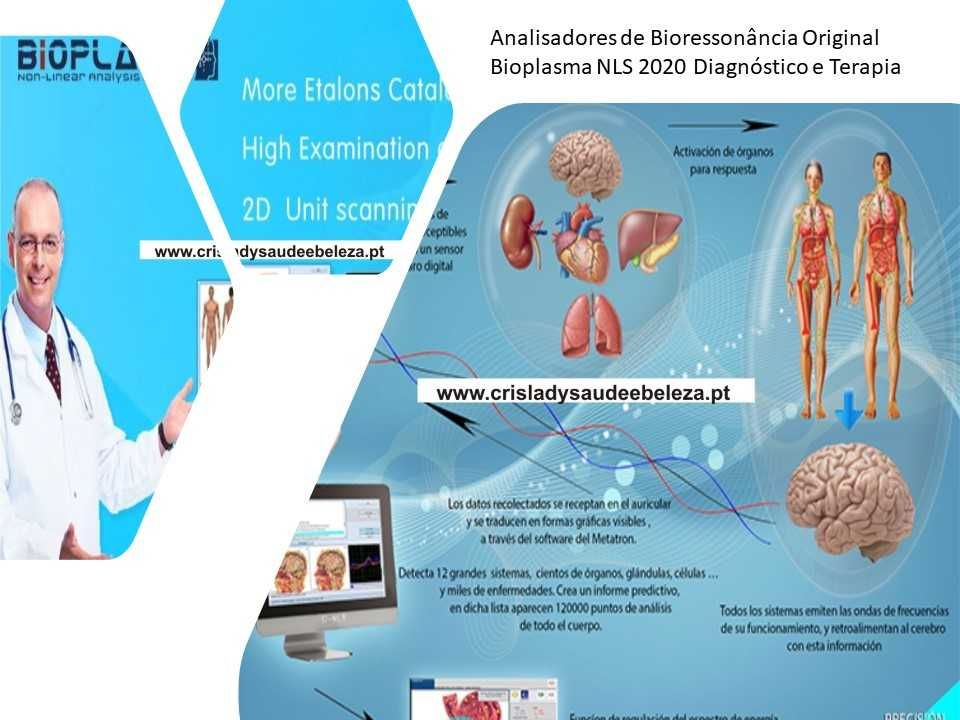 Analisador de bioressonância Tratamentos Aura, Tolerâncias Alimentares