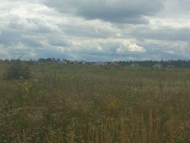 Земельна ділянка с/г, Фасова, Макарівський район