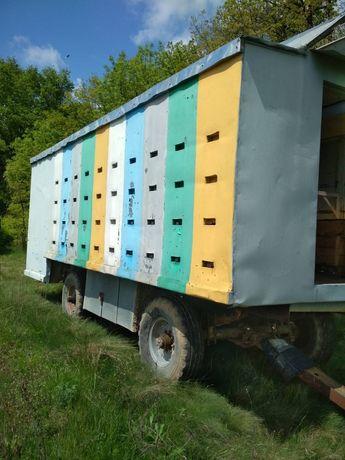 Прицеп Павільйон для утримання бджіл