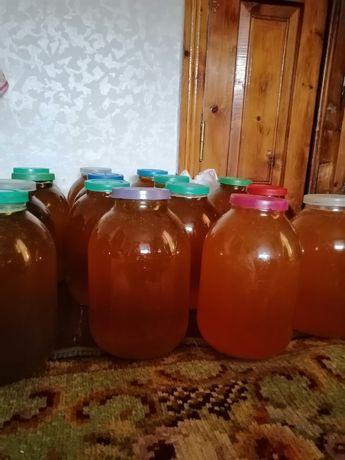 Продам мед подсолнух
