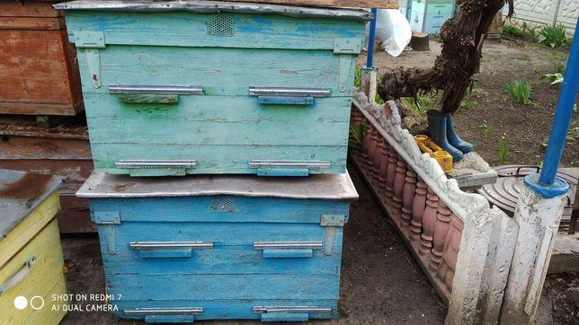 Улья для пчел ...