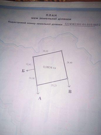 5250 $ .20 соток Дорогинка,Фастівський район