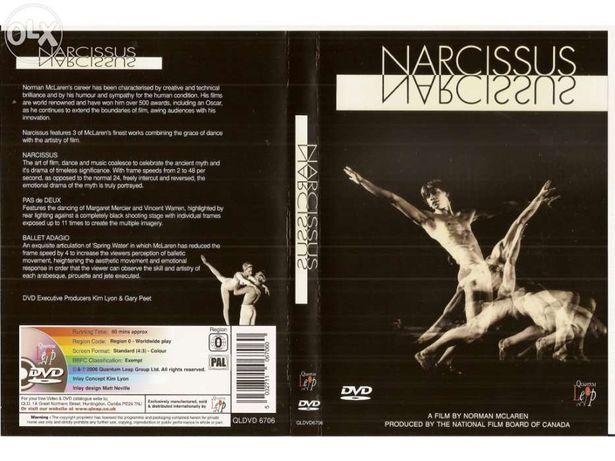 Narcissus (Portes Incluídos)