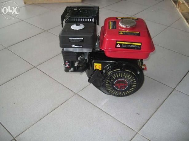Motor 7 cv Gasolina Novo