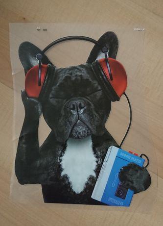Wpraska na ubranie Pies Słuchający Muzyki Śmieszne T-Shirt Koszulka