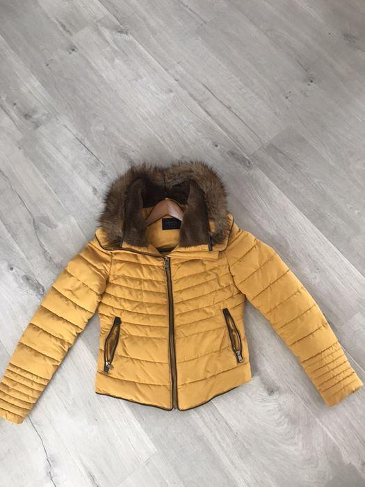 Kurtka Zara rozmiar M Kielce - image 1