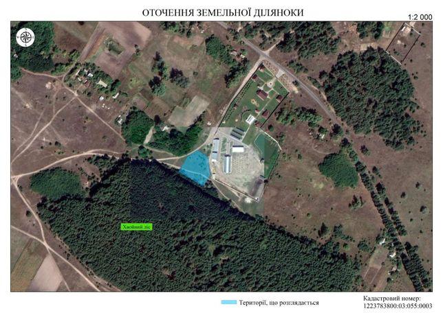 Участоск лес заповедник пгт.Шульговка 0.25га.