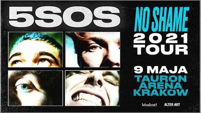 2 bilety na koncert 5 Seconds of Summer w Krakowie (płyta)