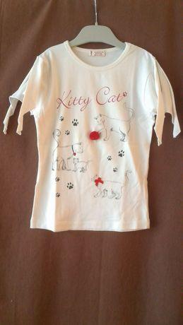 T-shirt com gatinhos