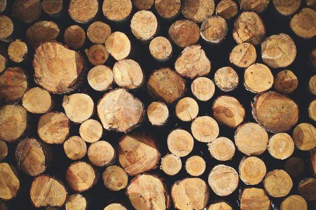 Drewno opałowe, brzoza, sosna na opał.