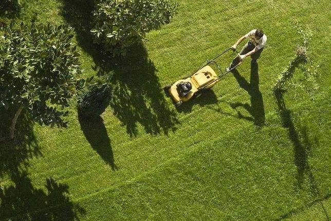 Pielęgnacja terenów zielonych, koszenie trawy