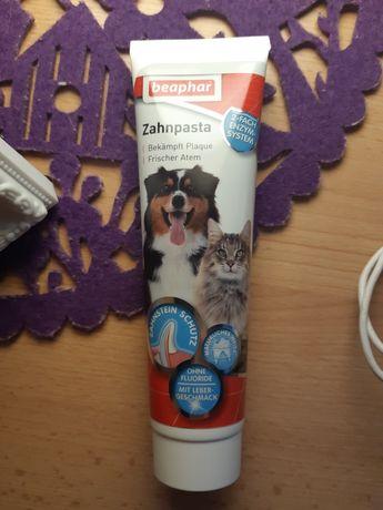 Pasta do zębów dla kotka / psa