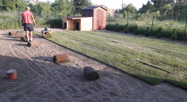 Prace ogrodowe, wertykulacja, pielęgnacja, usługi ogrodnicze, trawnik