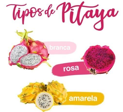 3 tipos de pitaya enraizadas disponíveis