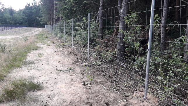 Tanie ogrodzenie, siatka leśna, słupki ocynk - ok. 35zł/mb z montażem