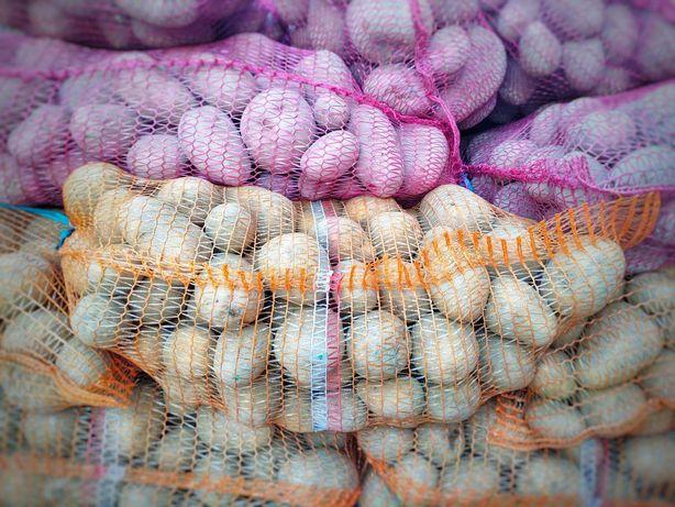 Warzywa, ziemniaki, marchew, buraki