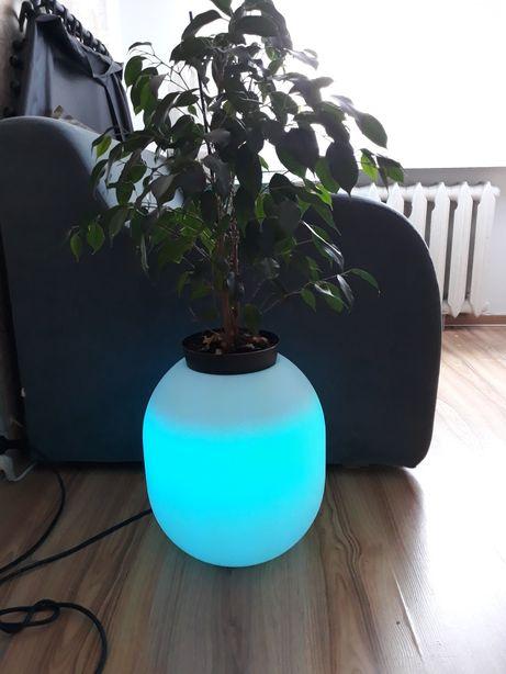 Donica LED