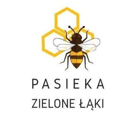 1kg Pyłek pszczeli prosto z pasieki
