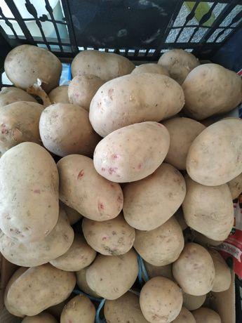 Batatas ano 2021