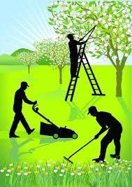 Usługi ogrodnicze, pielęgnacja ogrodów