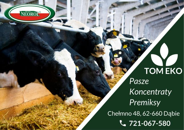 MIESZANKA B-18 %białka drożdże pasza bydło mleczne granulat