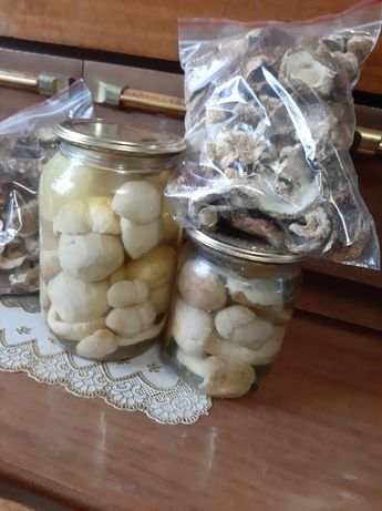 Грибочки білі мариновані і сухі