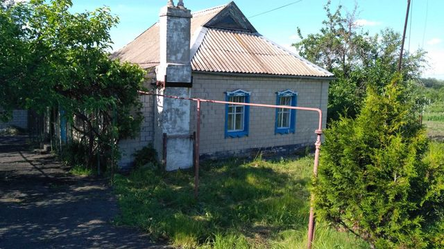 Продам дом в Криничках с земельным участком