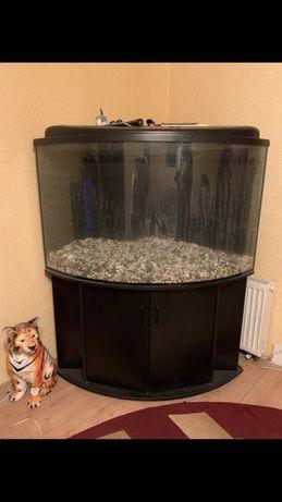 Продам аквариум угловой на 450 литров