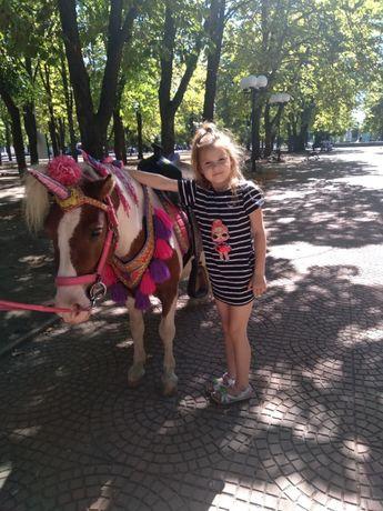 праздник для детей катание на пони