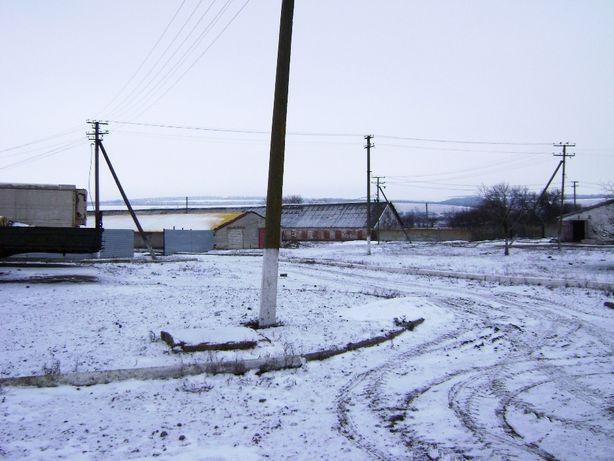 Свинокомплекс в Юрьевском районе
